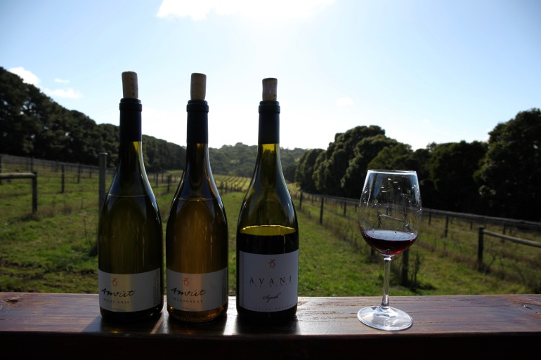 Avani- Wines in front of vines close up (1)