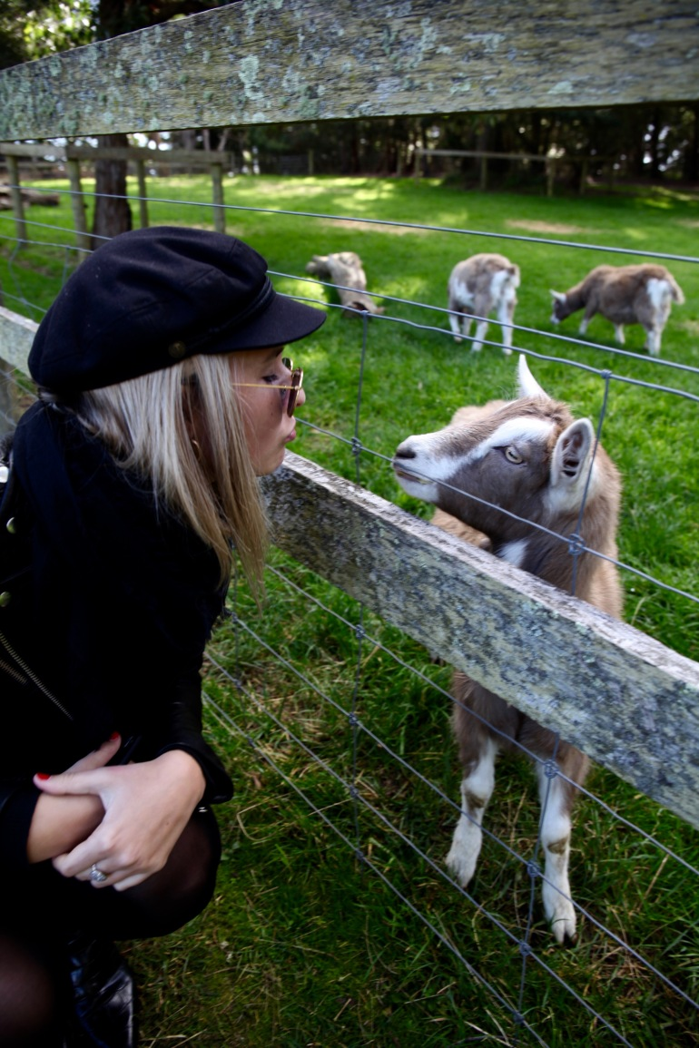Cheese- Jax and Goat Kiss (1)