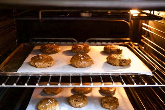 CCC- In oven